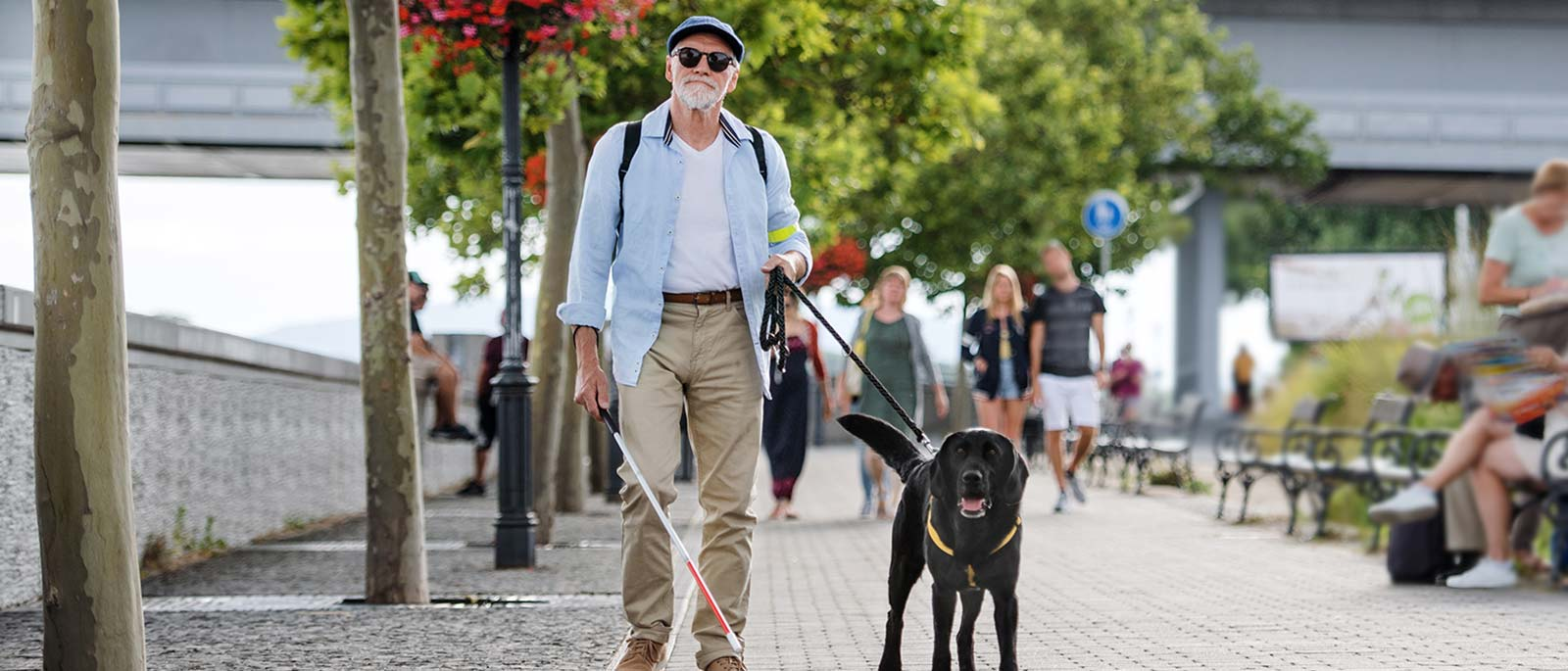 Man walking with service dog